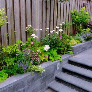 Borders in de tuin